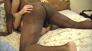Black Bull Breeding Wife